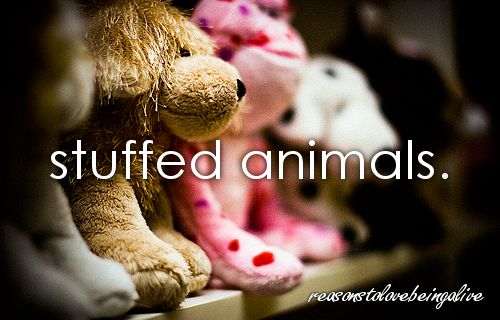 who ever came up with them is a genus!  I still have my very first Teddy Bear....never give it up!  They truly are a best friend!!!!: Favorite Animals, Favorite Things, Best Friends, Justgirlythings Love, Cutesy Things, Girl Things, Favorie Things, Girly Things 3, Just Girly Things