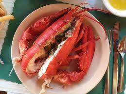 Hasil gambar untuk lobster