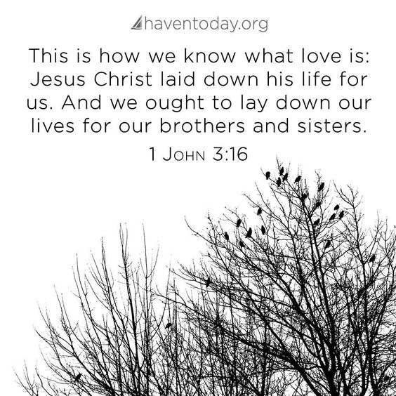 Brothers and sisters in Christ.