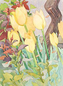 Carolyn Lord Fine Art