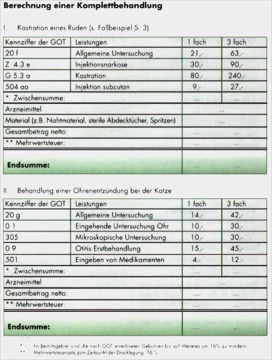 40 Inspiration Tierarzt Rechnung Vorlage Galerie In 2020 Rechnung Vorlage Briefkopf Vorlage Rechnungsvorlage