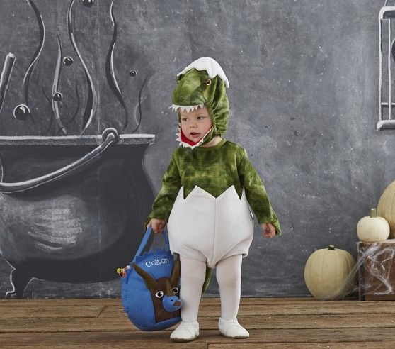 Pottery Barn Kids Kid And Baby Dinosaurs On Pinterest