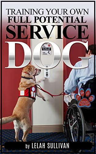 Training Your Own Full Potential Service Dog Step By Step Instructions With 30 Day Intensive Training Program To Get You Started Training Your Own Service Dog Service Dog Training Dog Training
