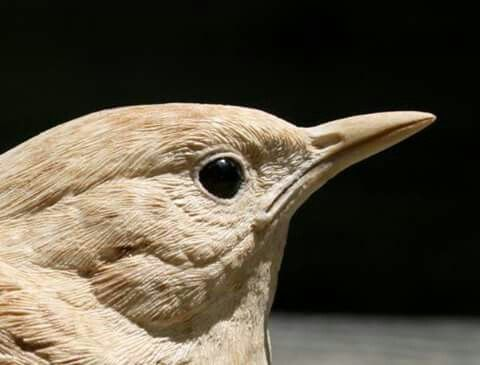 Oh My This Is Unbelievable K Wood Carving Designs Bird