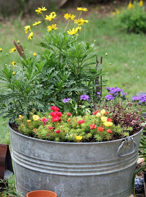 washtub container garden