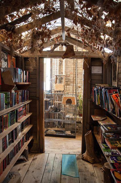 Wild Rumpus Books (Minneapolis, MN) by Snap Man, via Flickr