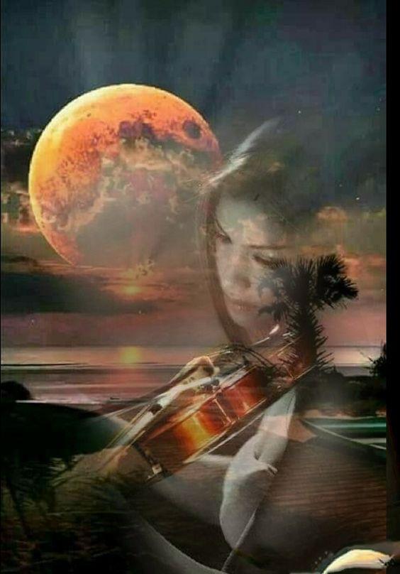 Chiara Anna...Non conosco la musica del cielo..E con queste note,cerco di fare una melodia! La piu' bella melodia che il cuore mi possa donare.Non è musica d'amore..Ma è musica composta da tante emozione ricevute..Un LA..per farla volare nel cielo..Un  DO..per emanare il mio calore...Un RE..per sentirmi regina dell' Universo..Un SI..per  donare la mia esistenza