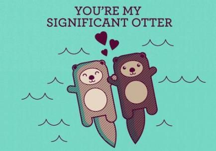 New Funny Memes About Relationships Hands Ideas Bee Cards Otter Art New Funny Memes