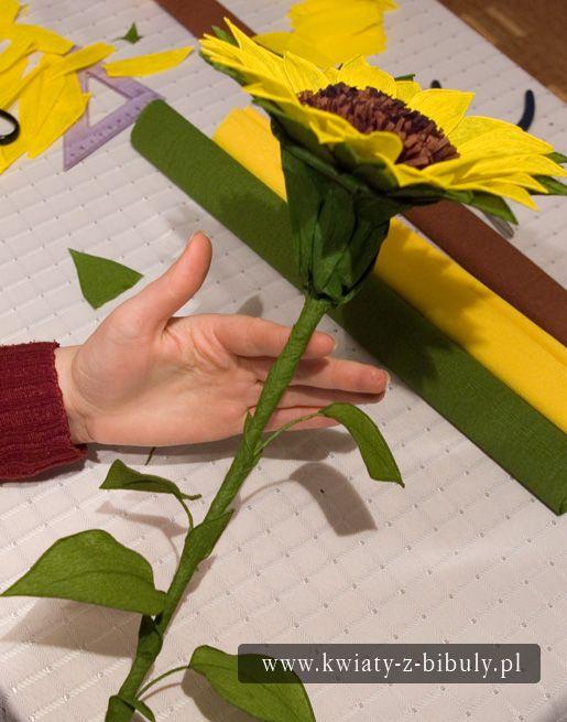 Sloneczniki Z Bibuly Instrukcja Paper Sunflowers Paper Flowers Crepe Paper Flowers