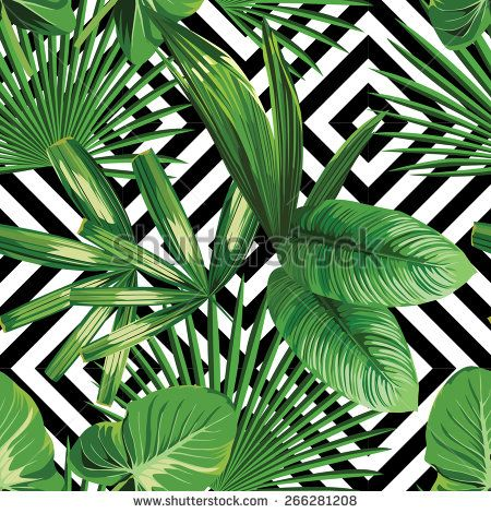 Print summer exotic jungle plant  tropical palm leaves. Pattern, seamless floral vector on the black white geometric background. Nature wallpaper. - stock vector