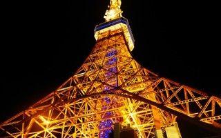 瞬く光の照らす場所へロマンチックな夜の東京デート