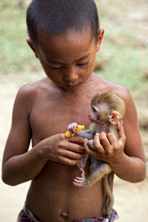 Frends Forever.. have you ever noticed the connection between children and small animals? They seem to sense their mutual smallness and fragility and are drawn together. I'm always amazed, too, at the kindness that most children show, unless they've been abused.: