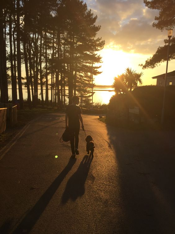 Walking dog to the beach at sunset