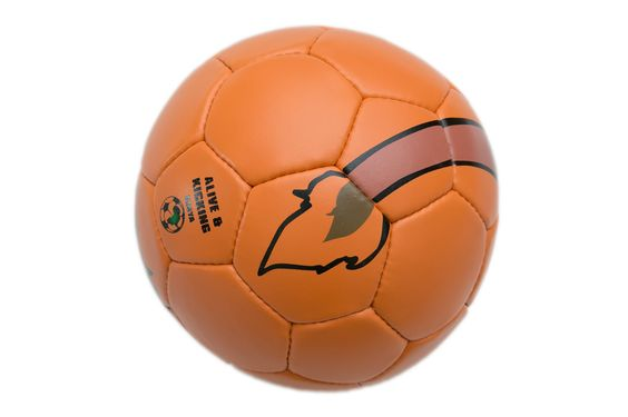 A lion tail branded football/soccer  size 5 @1650  call +25472093541