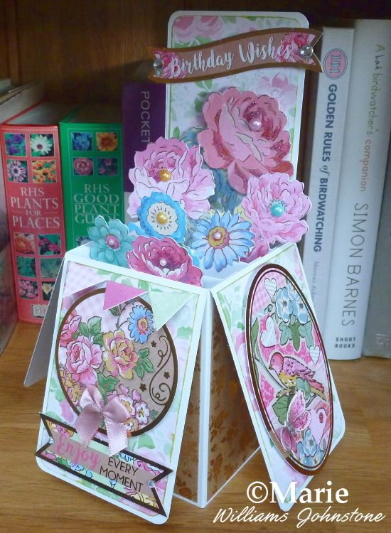 Easy Diy Pop Up Box Card Tutorial And Instructions Diy Pop Up Cards Box Cards Tutorial Pop Up Box Cards