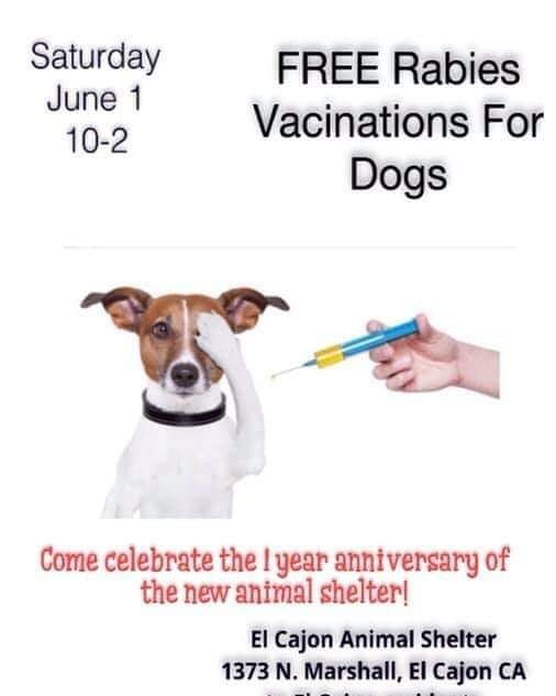 To The Celebrate The One Year Anniversary Of The New El Cajon Animal Shelter El Cajon Aces Foundation Is Offering Free Rabies Shots For Animal Shelter