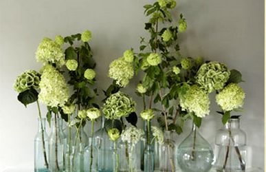 fresh floral cluster http://www.collection26.com/weddings/services/high-profile/