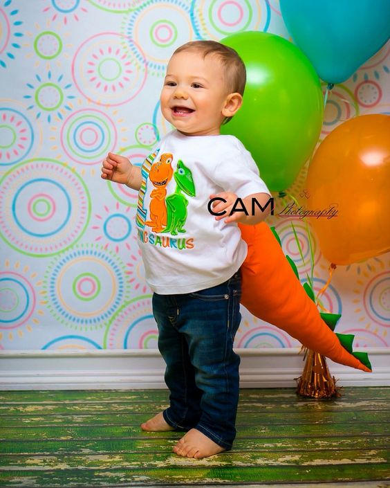 First Birthday Themes, Mini Sessions And Dinosaur Train On