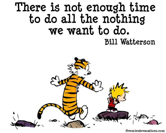 calvin and hobbes friendship quotes - Google Search