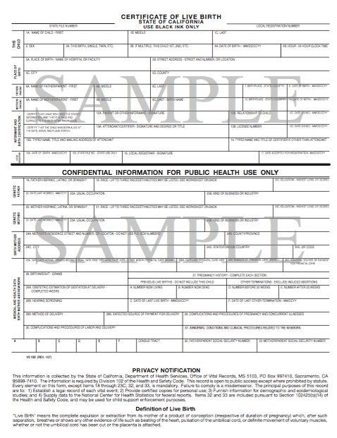 Sample Birth Certificate Template   Favorite Places  Spaces