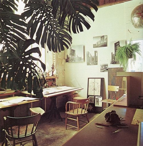 big, exotic-feeling potted plant and a drawing desk