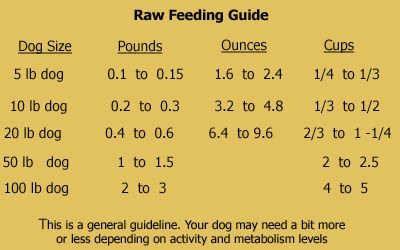 Free Raw Dog Food Recipes & Book Review