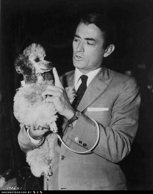 Gregory Peck with his toy poodle.