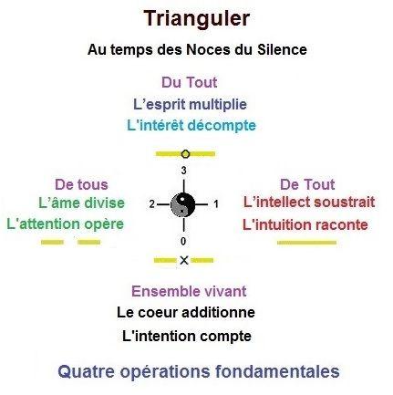 Triangulze: