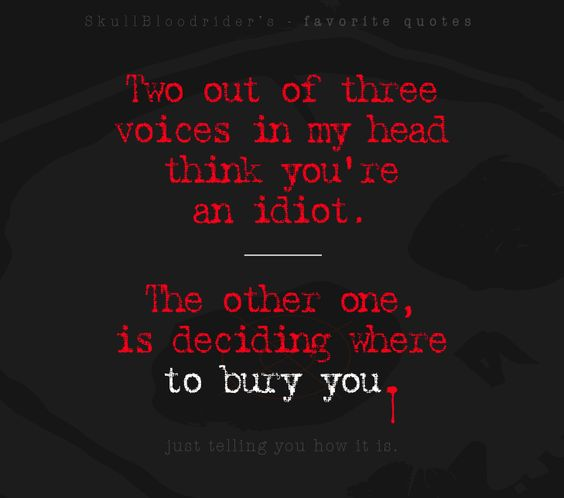 Two out of three voices in my head think you're an idiot. The other one, is deciding where to bury you.