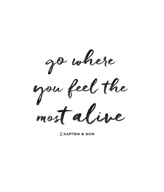 go where you feel the most alive | quote:
