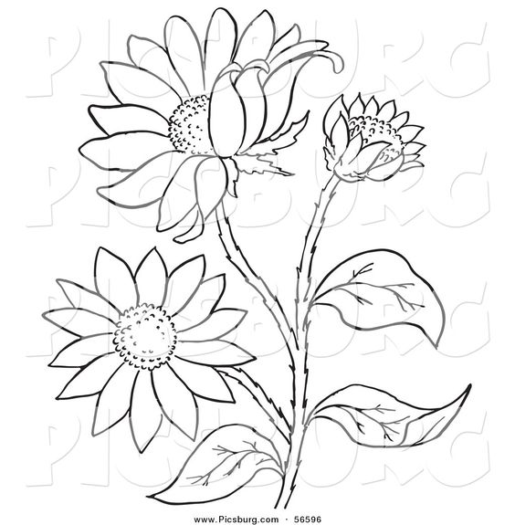 flower clip art color - photo #34