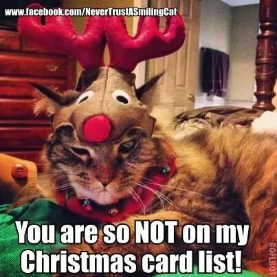 Your not on my Christmas card list