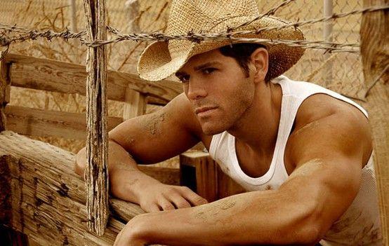 Cowboy Cowboy Cowboy