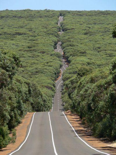 I wanna run this road!!!
