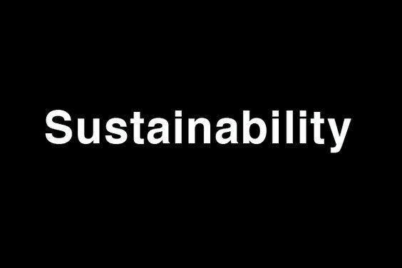 Суть слова заключается в нахождении компромисса между обществом и окружающей средой, и призывает нас жить такой жизнью, чтобы не подвергать риску следующие поколения, а также предоставить им возможность наслаждаться всеми благами, которыми обладаем мы сами.  Это поиск баланса между экологией, людьми и экономикой.