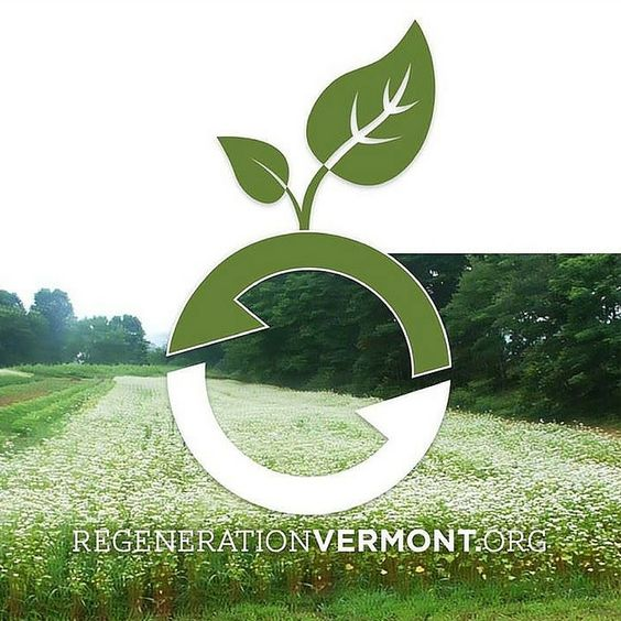 Regeneration Vermont is a new nonprofit educational and advocacy organization that is working to halt the catastrophic consequences of Vermont's adoption of degenerative, toxic and climate-threatening agricultural techniques, particularly within the dominant dairy sector.  #vermont #regeneration #farming #organic #nonprofit #ag #agriculture #dairy #climatechange #hunger #environment