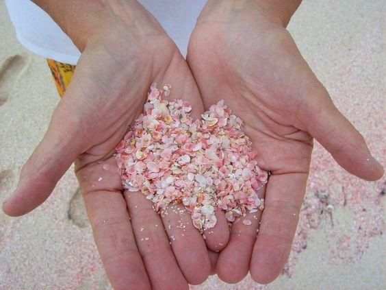 Pink Sand Beaches - Bermuda... wanna go back again someday *bucket list*: