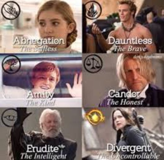 Divergent added to The hunger Games hungergames/humor divergent/insurgent