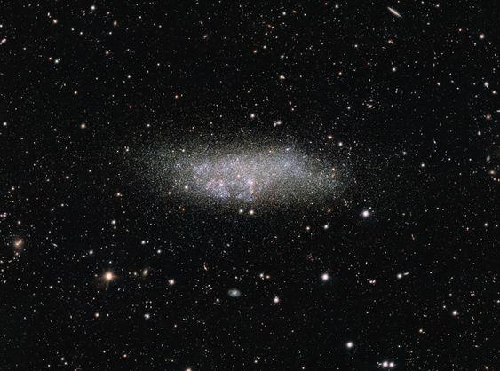 Galaxie naine de Wolf-Lundmark-Melotte aussi appelé galaxie de la Baleine faisant partie du Groupe local