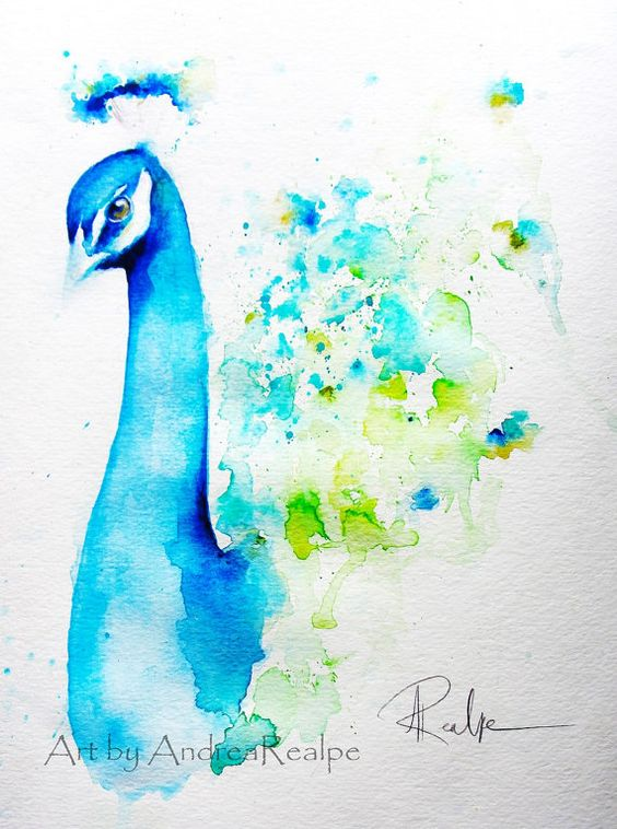 Original watercolor painting peacock watercolor bird by for Watercolor pictures easy