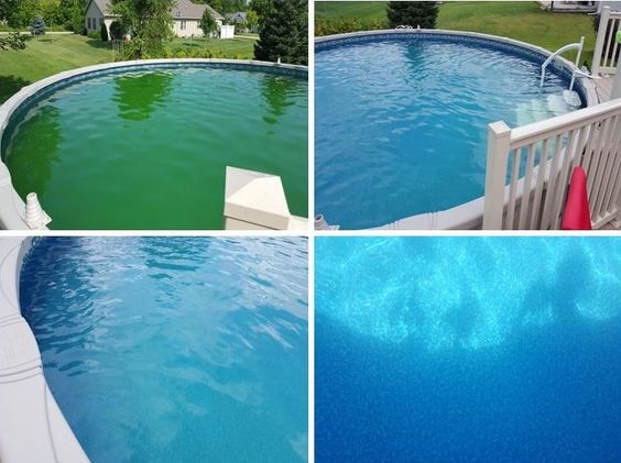 Above ground pool ground pools and swimming pools on pinterest Swimming pool algae treatment