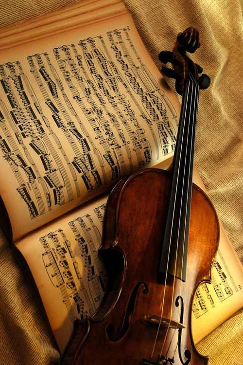 Music Just Love To Decorate With An Old Violin At