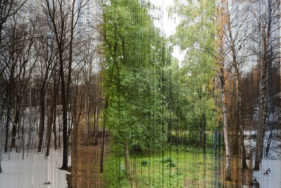 1 year in 1 picture.. wow! Eirik Solheim took a picture of the same spot every hour for an entire year in 2010 (that's 8,760 pictures) and then went through every single one to pick out the 3,888 images that were stitched together to make this photo.