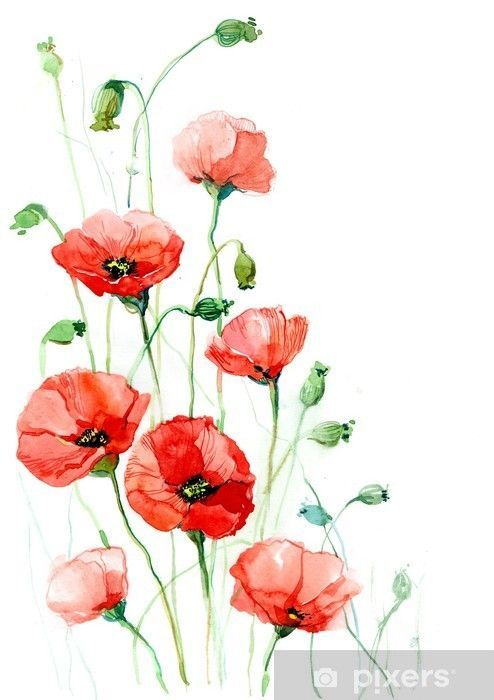 Poppies Series C Sticker Pixers We Live To Change Poppy