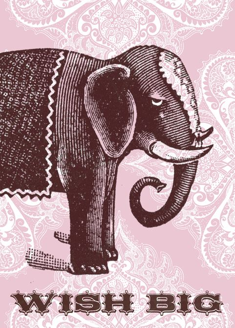 carto_1110868_pv_cc_pink_elephant