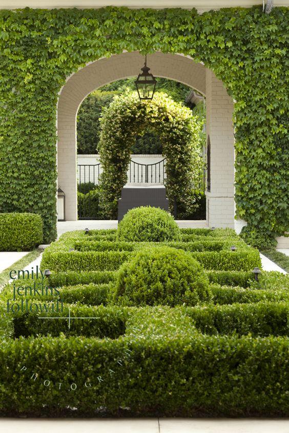 Topiary plants gardens for Garden parterre designs