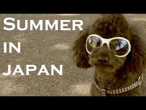 Summer in Japan (Kamakura, Kyoto, and Osaka)