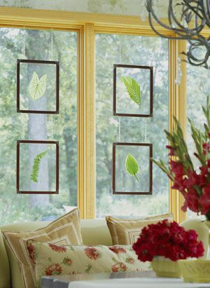 Single leaves and framed glass panels make for great grown-up sun-catchers :)