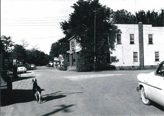 Renovation Of Reelfoot Hotel 1940s At Lake Tennessee Blue Bank Resort History