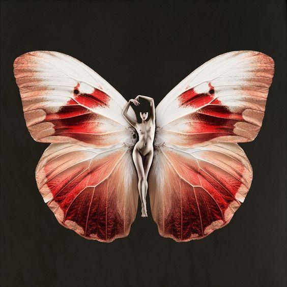 Carsten Witte's 'Psyche' Butterfly Series | Trendland: Fashion Blog & Trend Magazine
